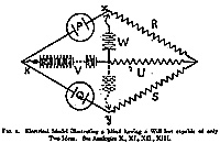 Electrical Model illustrating a Mind having a Will but capable of only Two Ideas